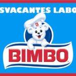 65 ofertas de trabajo en Bimbo de Colombia
